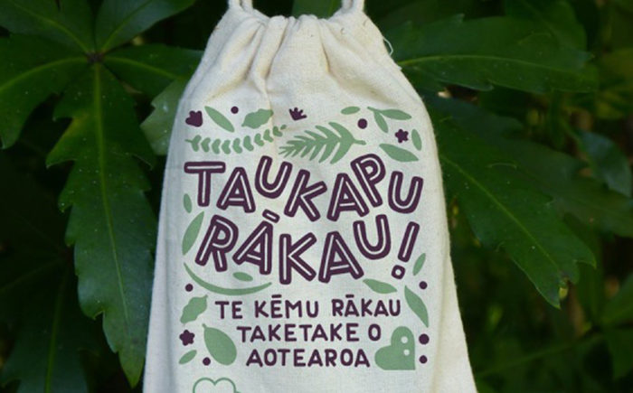 Maori version of Tree Snap game good for environment