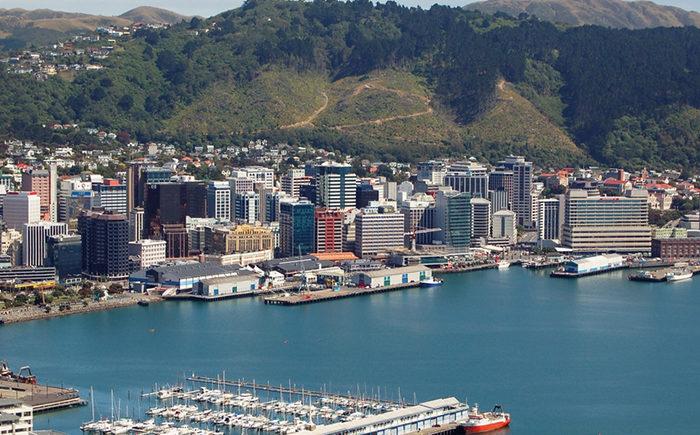Kuri care in Wellington reo playbook